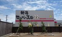 季節を問わず楽しめる!新潟県のおすすめデートスポット3選
